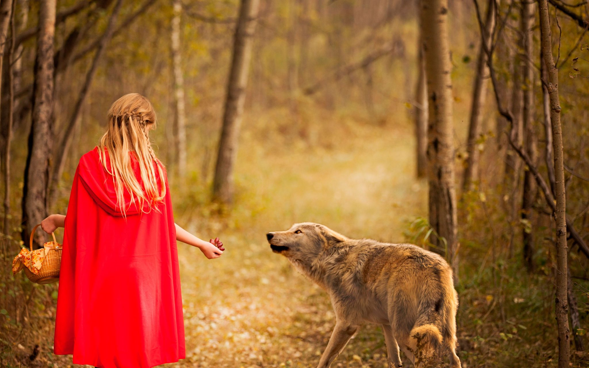 Пословица «Волков бояться – в лес не ходить»