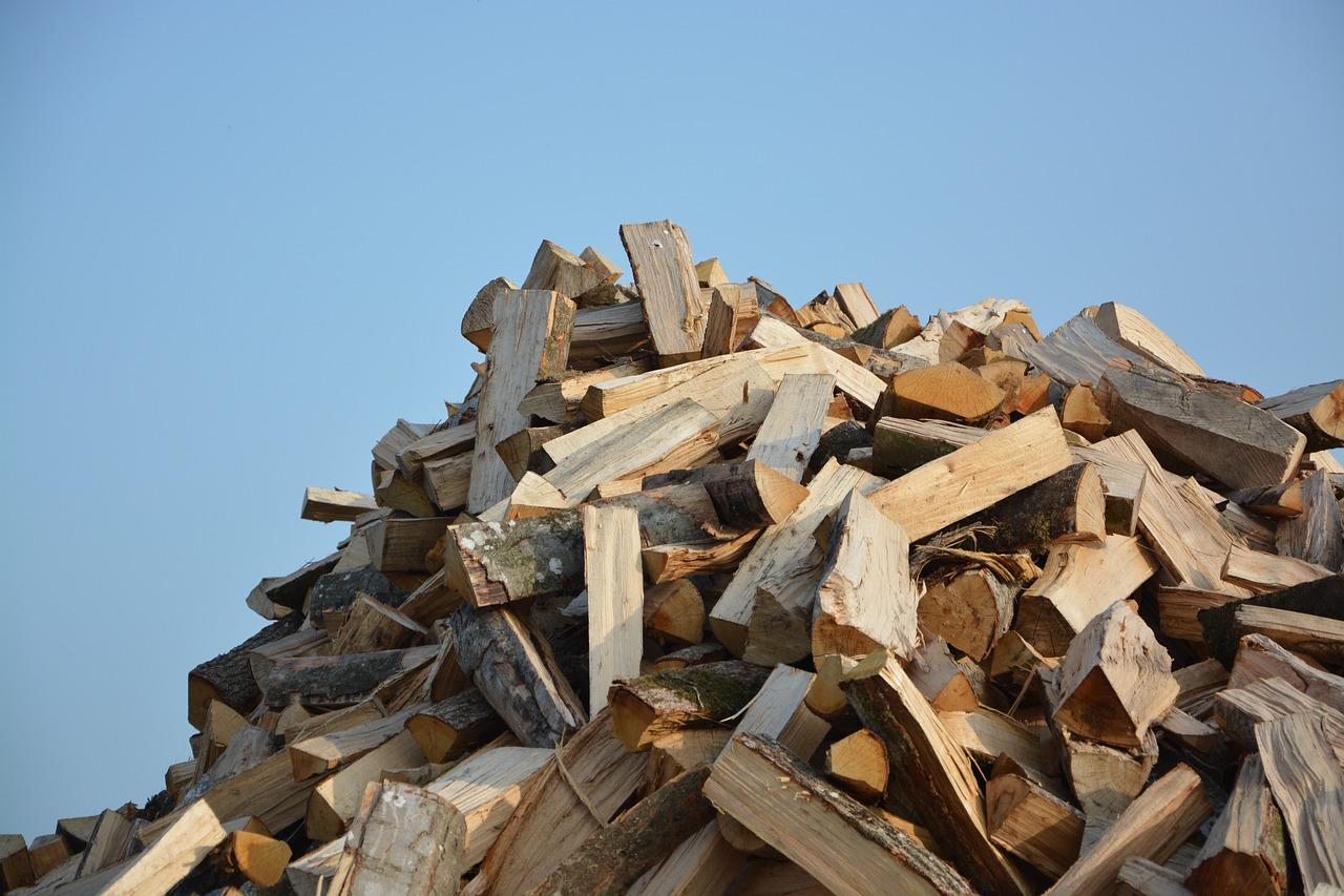 Значение и происхождение фразеологизма «наломать дров»