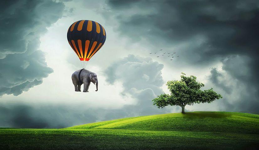 Значение фразеологизма «Делать из мухи слона»