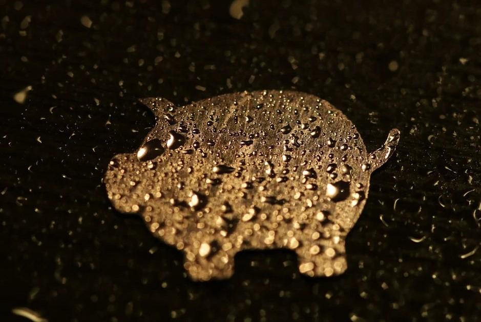 Смысл пословицы «Не всё то золото, что блестит»