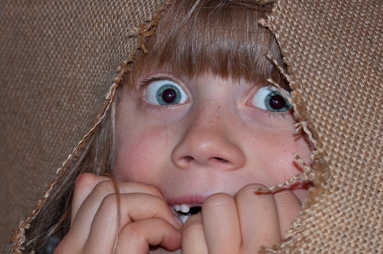 «У страха глаза велики» - значение пословицы